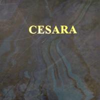 Коллекция Cesara, бренд Bernardo Bartalucci
