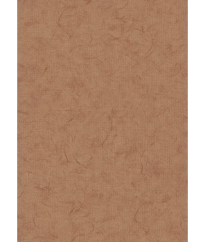 Нидерландские обои BN International, коллекция Glassy, артикул BN218313